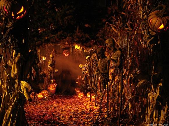 Halloween2009b_Pumpkinrot